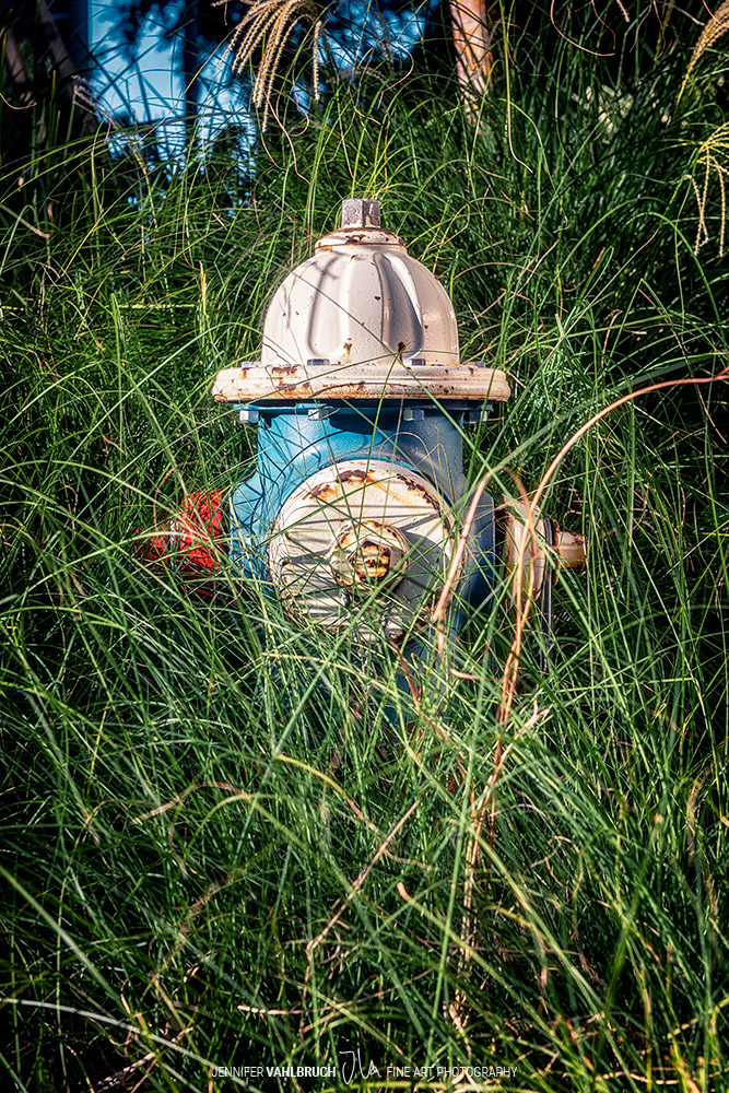 WE . same but different - Hydrant A2 - Jennifer Vahlbruch